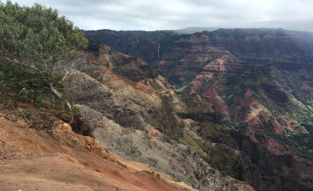 Hiking in Waimea Canyon. Photo by Janna Graber