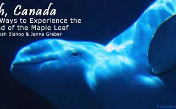 What to do and see in Canada