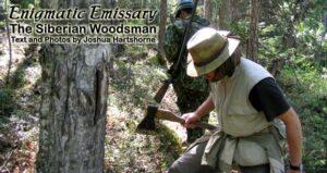 Enigmatic Emissary: The Siberian Woodsman