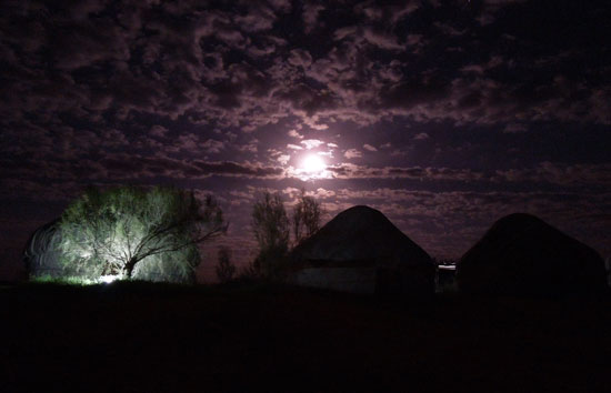 Staying in a yurt in the Uzbek desert was an unforgettable experience. Photo by Alex Jones