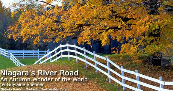 Niagara's River Road: An Autumn Wonder of the World