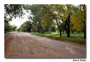 Traveling the tree-lined streets by bike is a wonderful way to explore the town.