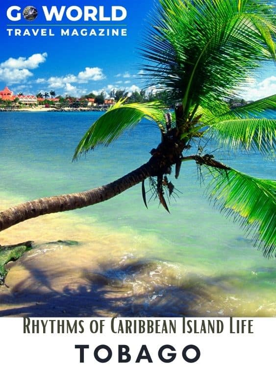 Considered by many as the true Caribbean, Tobago is the smaller of the two islands consisting of the nation of Trinidad and Tobago #beachvacation #tobago #caribbean #tobagocaribbean #caribbeanisland #goworldtravel