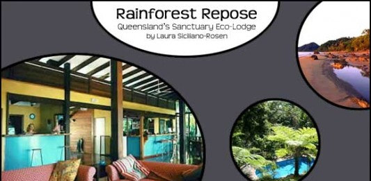 Rainforest Repose: Queensland's Sanctuary Eco-Lodge