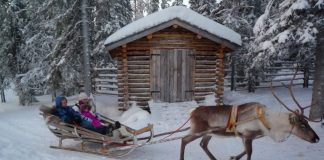 Reindeer-drawn sleigh in Lapland. Flickr/Timo Newton-Syms
