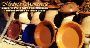 Medina Menagerie: Old City of Fez, Morocco