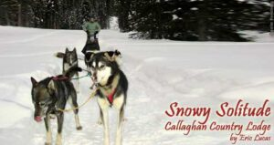 Snowy Solitude: Callaghan Country Lodge