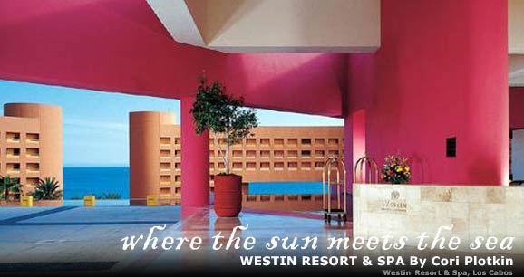 Westin Resort and Spa Los Cabos: Where Sun Meets the Sun