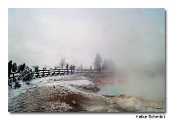 Yellowstone is gorgeous in the winter.