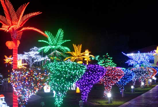 The grounds of the Crighton home is lit with millions of lights. Photo by Claudia Carbone