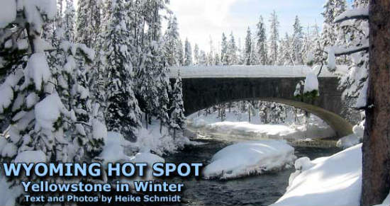 Winter in Yellowstone is a mix of snow and warm natural springs.