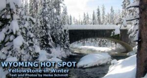 Wyoming Hot Spot: Yellowstone in Winter