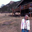 Catch rest in a spacious cabin at McGregor Mountain Lodge. Chances are you will meet Lefty, the resident elk.