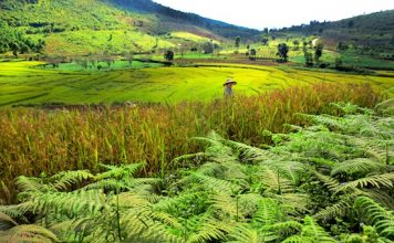 Travel in Burma