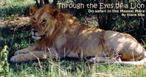 On Safari in Maasai Mara: Through The Eyes of a Lion