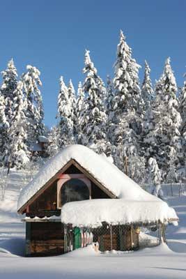 Glistening snow covers a mountain cabin in Silverton. Photo by Colorado.com