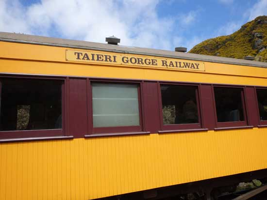"Most train cars on the Taieri Gorge Railway are bright yellow ""heritage carriages."" Photo by Catherine Fancher"