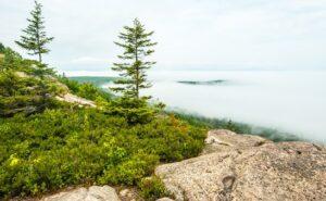 Family Travel: Mount Desert Island, Maine