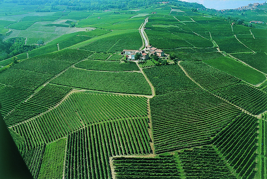 Wine Country, Italy