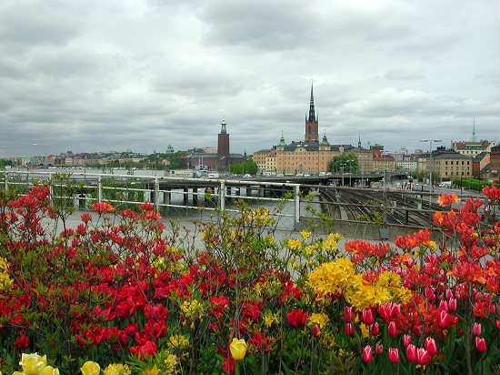 view of stockholm and its bridges resized