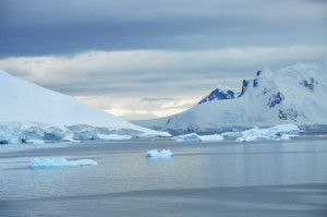 Antarctica: Looking for Captain Cook