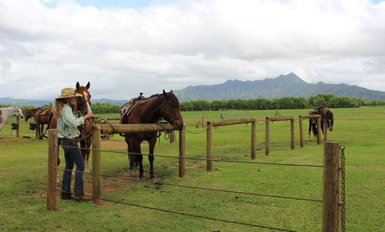 Princeville Ranch on the North Shore offers a ride to a waterfall and picnic lunch. Photo by Janna Graber