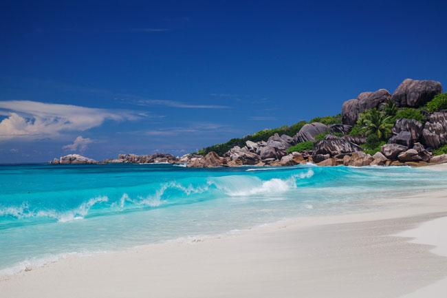 Wild Isle: The Seychelles' Frégate Island