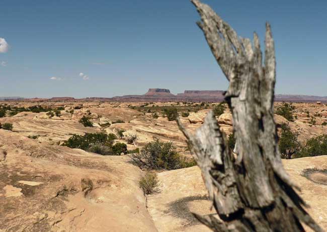 Canyonlands National Park. Flickr/Jirka Matousek