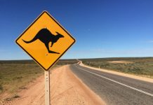 Tips for Western Australia road trip