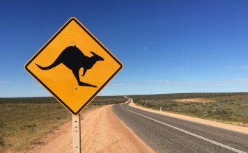 Tips for Western Australia road trip