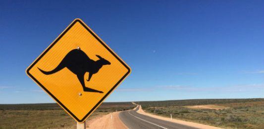 Western Australia Road Trip: Pros and Cons