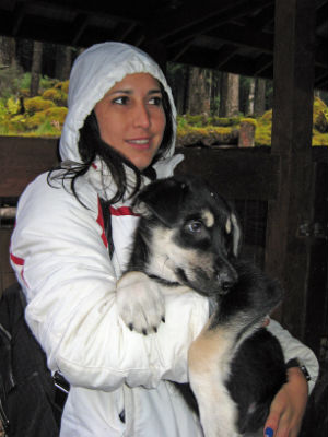 Dog petting is a popular activity for visitors to Juneau.