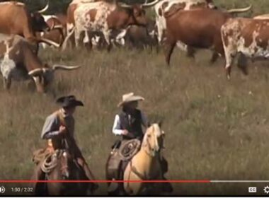 Discover the Old West in Kansas