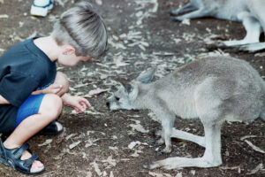Sweet on Sydney: Australia's Family-Friendly City