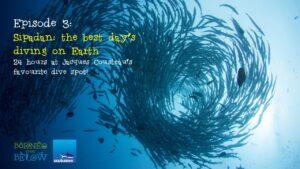 Diving at Sipadan Island: Jacque Cousteau's Favorite Dive Site