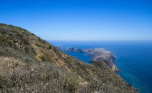 Ask the Locals: The Channel Islands of California