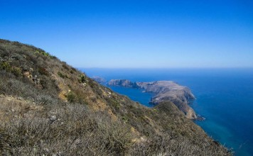 The Channel Islands in California. Flickr/ Island Conservation