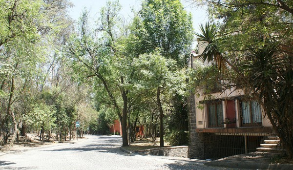 San Angel is a peaceful place to enjoy your day.