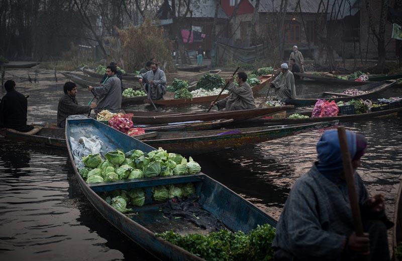 Vegetable Sellers of Dal Lake