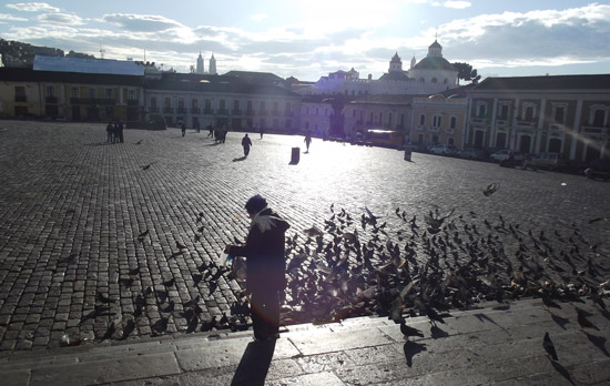 Travel in Ecuador: A morning scene in Plaza San Francisco, Quito, Ecuador. Photo by Irene Middleman Thomas