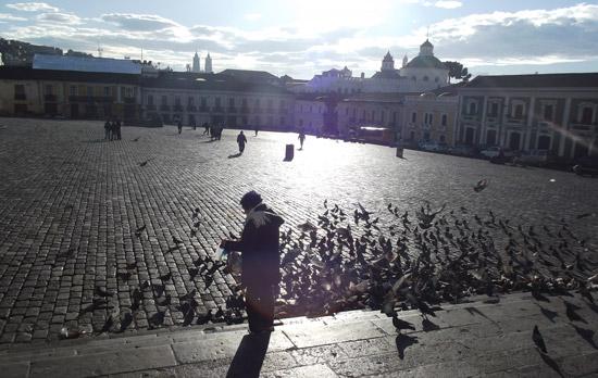 Travel in Ecuador: A morning scene in Plaza San Francisco, Quito, Ecuador. Photo by Irene Middleman Thomas