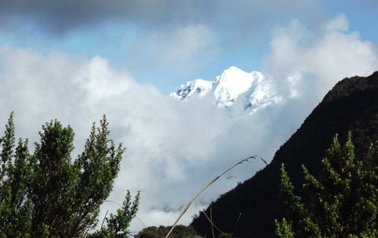Cotopaxi Volcano in Ecuador peeking through the afternoon cloudbanks. Photo by Irene Middleman Thomas