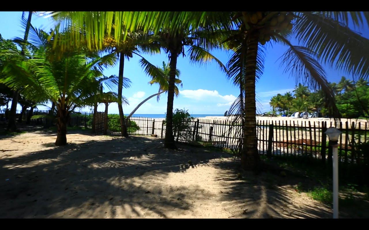 Video: Kerala, India – A Tropical Paradise
