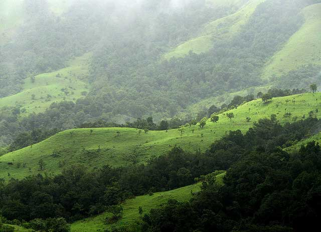 Travel in Kudremukh, India