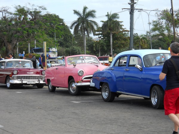 Cuba's classic cars. Photo by Steffany Willey
