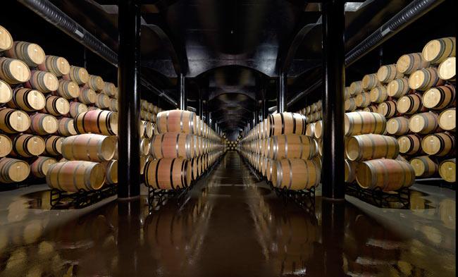 Quinta do Crasto - Winery Tour in Portugal