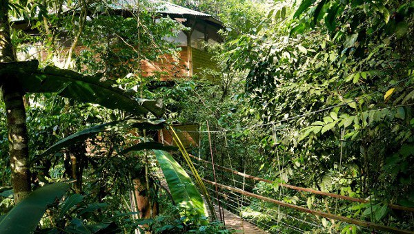 Overnight stay in a tree house - The tree houses blend almost imperceptibly with nature. Photo by Kelvin L. Woelk