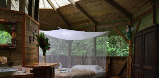 Three Nights in a Tree: Finca Bellavista, Costa Rica