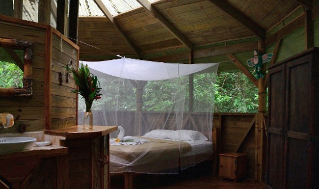 Stay in a treehouse in costa rica