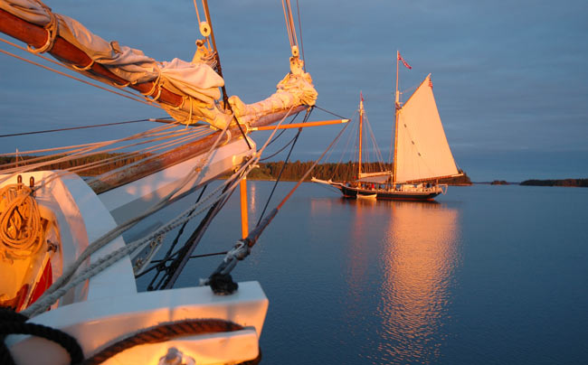 The windjammer Mary Day at anchor. Photo by Captain Jen Martin